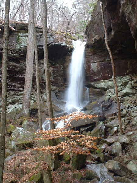 WestBee Falls in Sipsey Wilderness