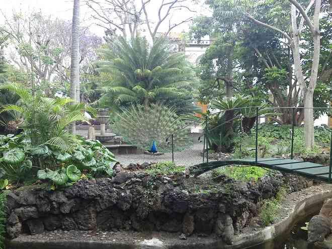 Botanic Gardens in Arucas